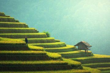 7 עובדות מוזרות על סין